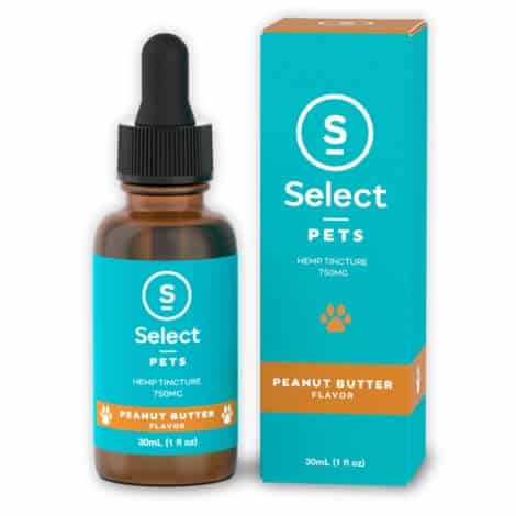Peanut Butter Flavored Pet CBD-750mg